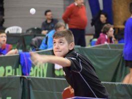 Cinci medalii pentru Romania la Openul Serbiei la Tenis de Masa
