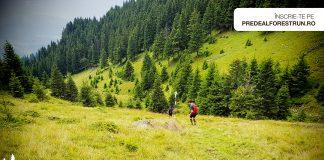 Predeal Forest Run ! Va puteti inscrie pentru Trail running! Traseul K39 are 38,5 km
