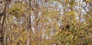 Nicolae Gheorghe progreseaza la Baneasa Forest Run. Drumul spre victorie!